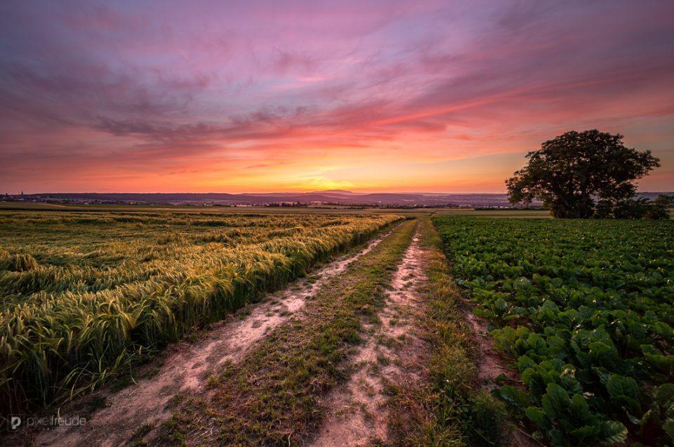 Der Weg zum Sonnenuntergang