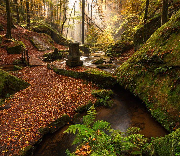 Herbst im Tal