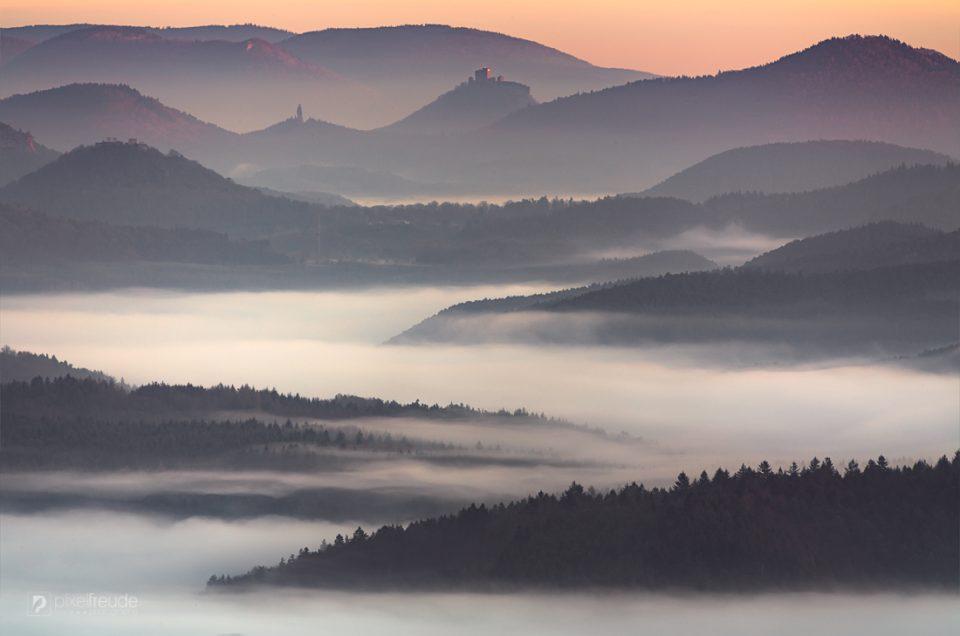 Nebelseen