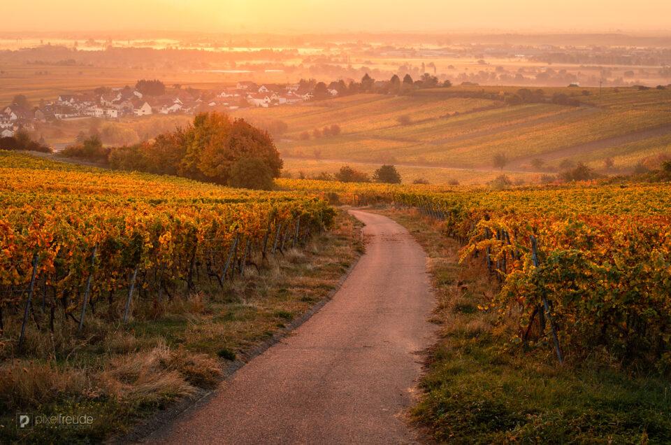 Pfalz-Kalender 2021
