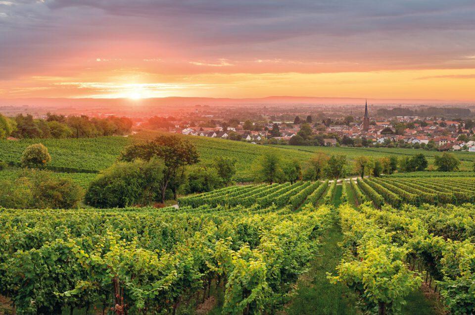Pfalz-Kalender 2022